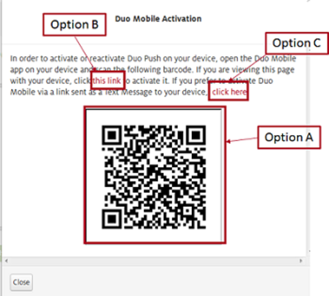 Options for activating Duo
