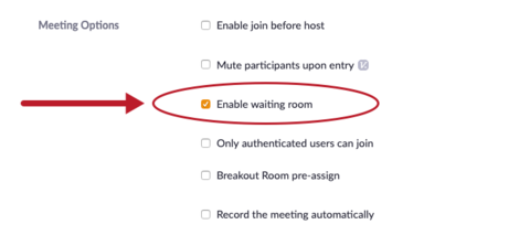 Meeting Options section with Enable Waiting Room selected