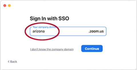 """domain field with """"arizona"""" filled in"""